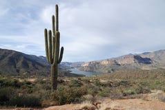 озеро апаша Стоковое фото RF