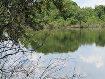Озеро Алиса стоковые фотографии rf