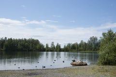 Озеро Аляска отражени дня потехи семьи лета Стоковые Изображения