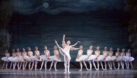 озеро балета выполняет королевского русского лебедя стоковая фотография