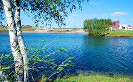 озеро березы Стоковое Изображение