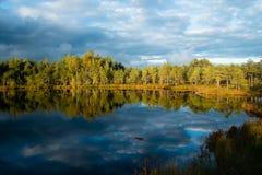 Озеро болот Стоковое Изображение RF