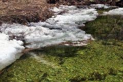Озеро весной Стоковые Фотографии RF