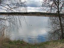Озеро весной Стоковое Фото