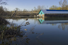 Озеро весн Стоковое Фото