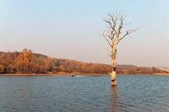 озеро вечера dubrovo Беларуси сделало человека переместить Стоковое Изображение RF