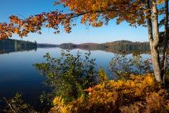 озеро все еще Стоковые Изображения RF