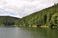 Озеро в горах и древесине Стоковое Фото
