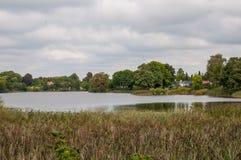 Озеро в датском городке Стоковая Фотография