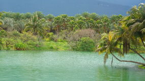 Озеро в деревне стоковая фотография rf