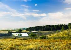 Озеро в лесе в горах Стоковое Изображение RF