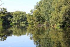 Озеро в лесе с отражением в воде Стоковые Изображения