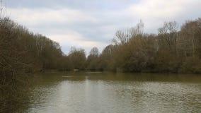 Озеро в зиме видеоматериал