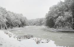 Озеро в зиме Стоковые Изображения RF
