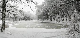 Озеро в зиме Стоковое Изображение RF