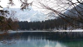 Озеро в зиме Стоковое Фото