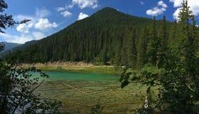 Озеро в канадских скалистых горах - национальный парк Kootenay стоковые фотографии rf