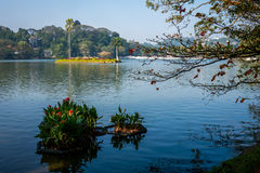 Озеро в Канди, Шри-Ланке Стоковое Фото