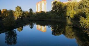 Озеро в красивом парке стоковые фото