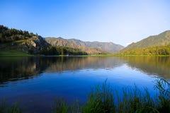 Озеро в лете Стоковое фото RF