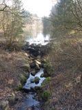 Озеро в малый водопад в древесинах стоковые фотографии rf