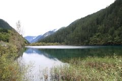 Озеро в национальном парке Jiuzhaigou Стоковое Изображение RF