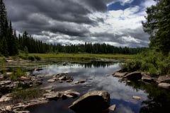 Озеро в национальном парке Algonquin - Онтарио Стоковое Фото