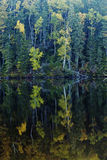 Озеро в октябр Стоковые Изображения RF