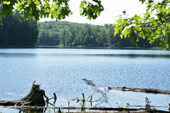 Озеро в Онтарио Стоковые Фото