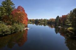 Озеро в осени Стоковые Фото