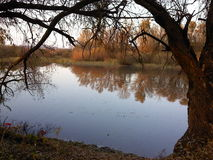 Озеро в осени Стоковое фото RF