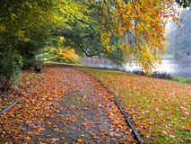 Озеро в парке в осени. стоковое фото