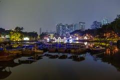 озеро в парке на ноче Стоковые Фото
