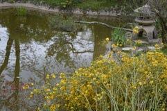 Озеро в парке с орнаментами Стоковое фото RF