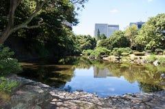 Озеро в парке Стоковая Фотография RF