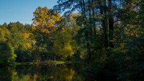 Озеро в парке Стоковая Фотография