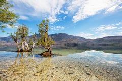 Озеро в Патагонии стоковое фото rf