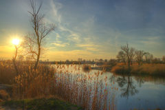 Озеро в предыдущей весне Стоковые Изображения RF