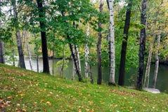 Озеро в предыдущей осени, Monroe County лес, Висконсин, США Стоковые Изображения RF