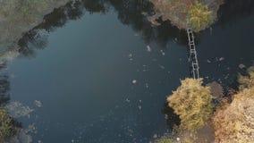 Озеро в пуще осени акции видеоматериалы