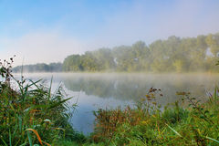Озеро в тумане утра Стоковое Изображение