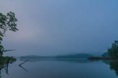 Озеро в утре Стоковые Фото