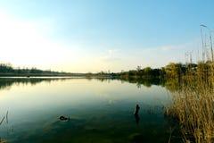 Озеро в частном секторе Стоковое Фото