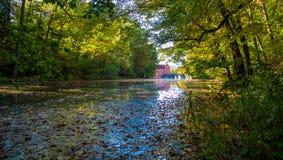 Озеро в Cervena Lhota стоковые фото