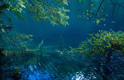 Озеро в Jiuzhaigou Valley, Сычуань, Китае стоковое изображение rf