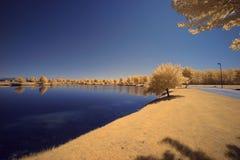 Озеро в McHenry, Иллинойсе Стоковое фото RF