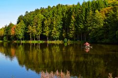 Озеро Германия Beuerbacher, осенью стоковые изображения