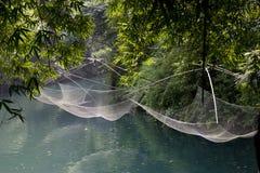 Озеро голубой воды в bamboo пуще Стоковые Изображения