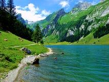 озеро, гора, вода, ландшафт, природа, горы, небо, синь, река, лес, лето, отражение, зеленый цвет, сценарный, взгляд, перемещение, стоковое изображение
