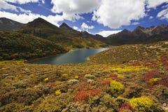 озеро гористой местности Стоковые Изображения